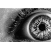 10 мифов о контактных линзах